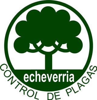 Echeverria - Chile